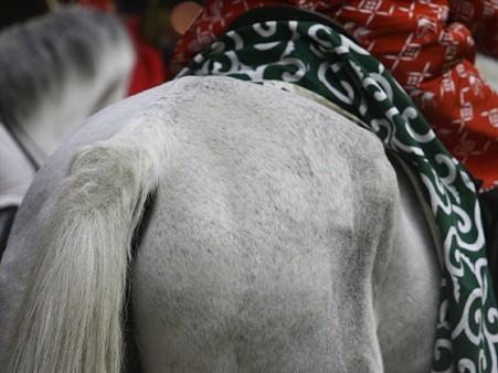 川崎競馬の誘導馬01月開催 獅子舞 赤半纏Ver-120107-11