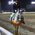 写真: 川崎競馬の誘導馬04月開催 桜Verその2-120409-20-large