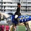 写真: 川崎競馬の誘導馬05月開催 こいのぼり青Ver-120514-05-large