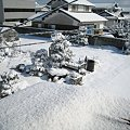 昨日雪かきしたのに…