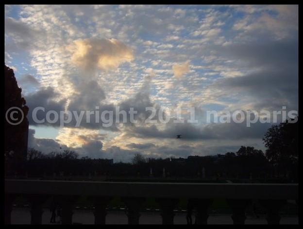 写真: P2940412