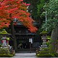 写真: 『秋薫。。。』