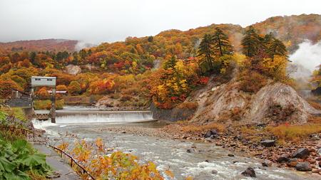葛根田渓谷~滝ノ上温泉付近の紅葉・3