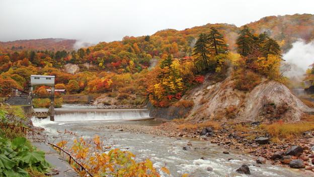 Photos: 葛根田渓谷~滝ノ上温泉付近の紅葉・3