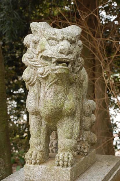芦屋町 伊豆神社