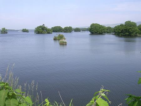 夏の大沼1