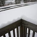 Photos: 21日 NY 雪がぁ~