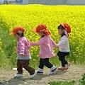 Photos: つなぐ 小さな架け橋 ☆