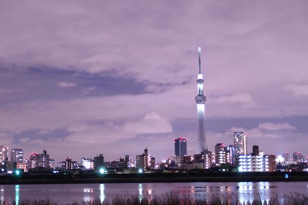 Photos: 鎮魂の灯 01