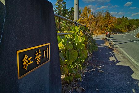 紅葉川に掛かる橋(SDIM0441)