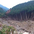 写真: 高原~洞川線 土砂崩れ