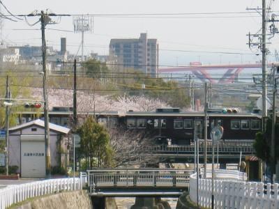 阪急電車と桜と海