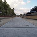 竹取公園・法隆寺