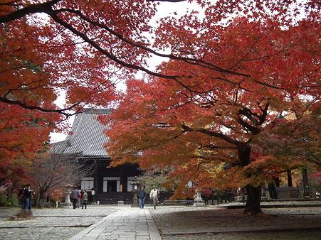 京都 421
