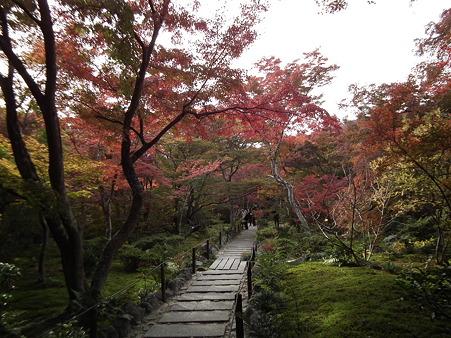 京都 061