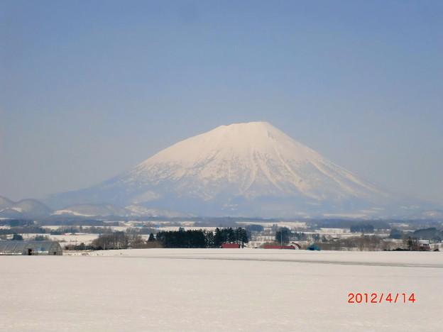 雪景色の春.7