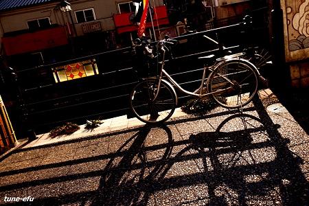 対馬にて・・自転車とステンド