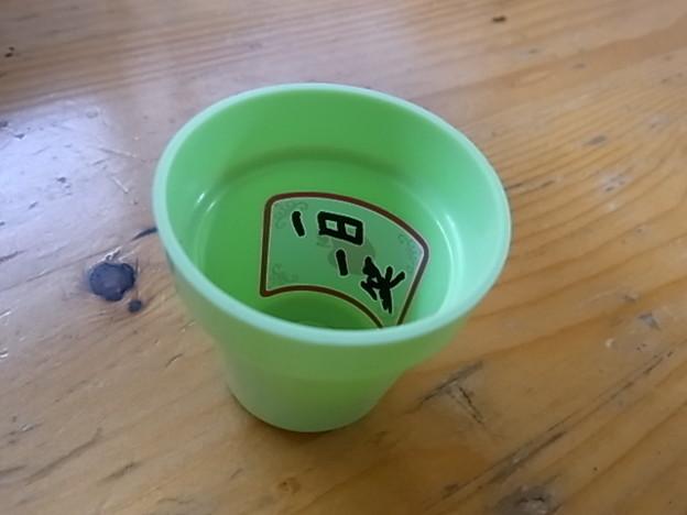 写真: 鉢