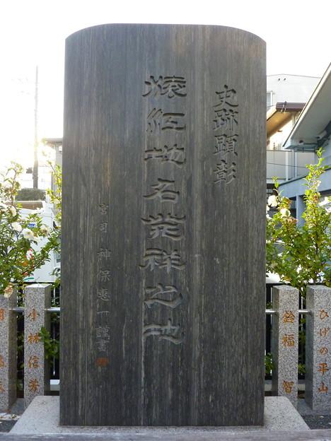 猿江神社 25