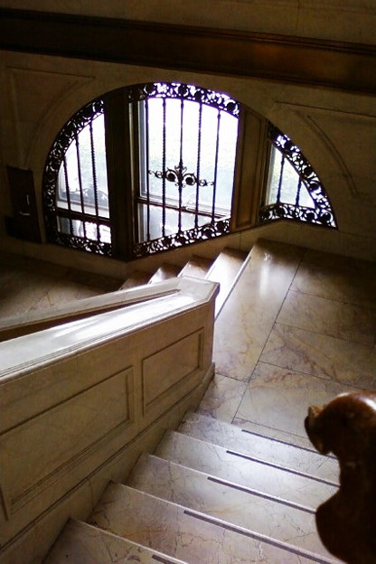 Photos: 階段も立派ですわ・・・