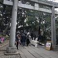 Photos: yoyohachi110206002