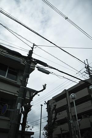 2011-03-21の空