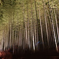 Photos: 京都・嵐山花灯路 竹林の小径