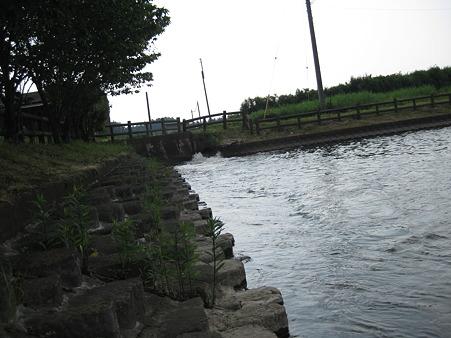 遠州池 (1)