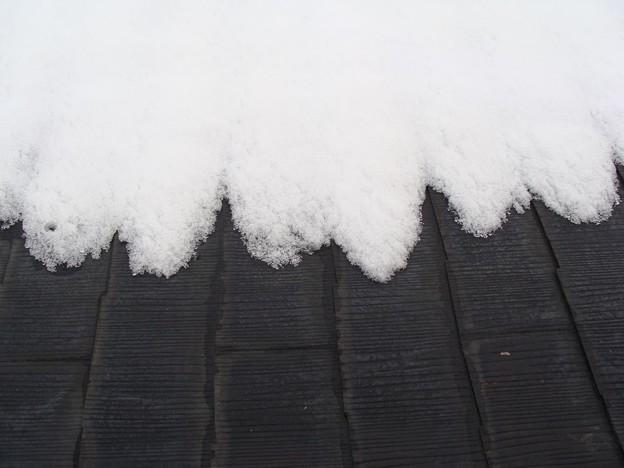 雪のフリル