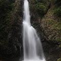 写真: 白神山地・暗門の滝