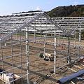 Photos: ハウス建設25日目