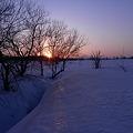 雪に埋もれる小川