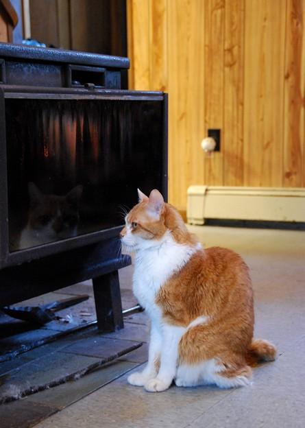 Photos: Oh It's Warm