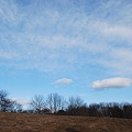 写真: The Vast Sky