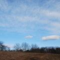 The Vast Sky