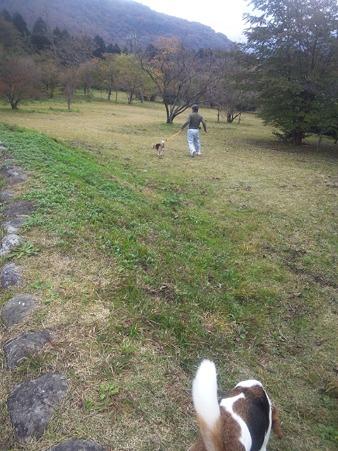 箱根のお山の公園を散歩だー!