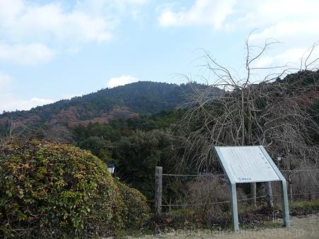 111229-三輪山 大神神社 (18)