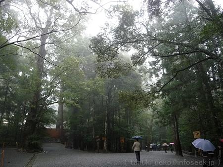 120305-お伊勢さん 内宮 (24)