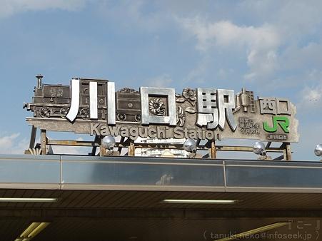 120405-THE ALFEE@川口 (1)