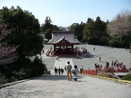 110225-鶴岡八幡宮 (50)