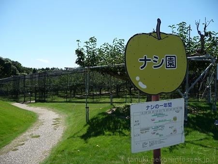 110906-浜松フルーツパーク ナシ (1)