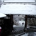 Photos: 東慶寺山門20120229