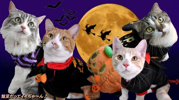 wallpaper-halloween3