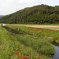 亀岡の自然・宮前町(2002年9月)