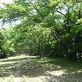 Photos: P1210771小谷城 千畳敷