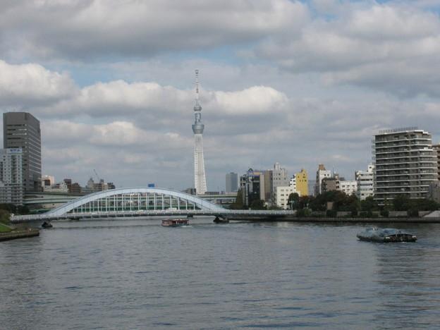 Photos: 永代橋とスカイツリー