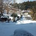 Photos: 雪掻き完了。今日は誰も踏ん...