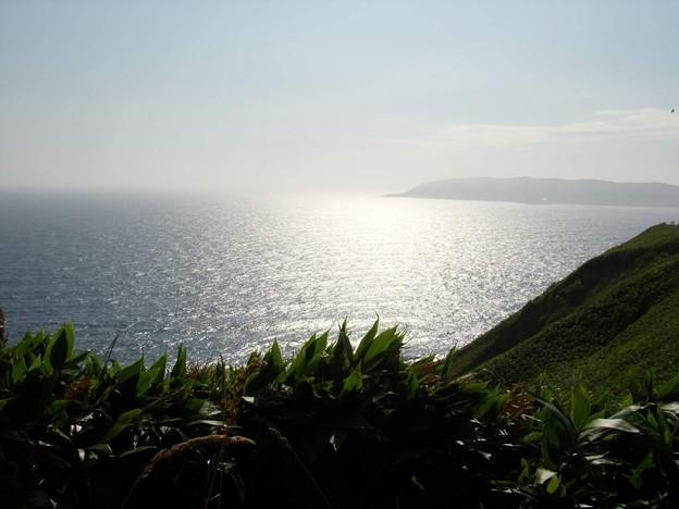 写真: 8_11焼尻島南西端から望む天売島