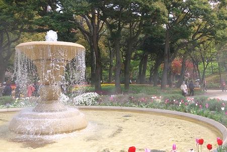 2012.04.19 横浜公園 チューリップ 噴水