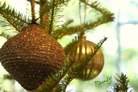 Christmas Season..6